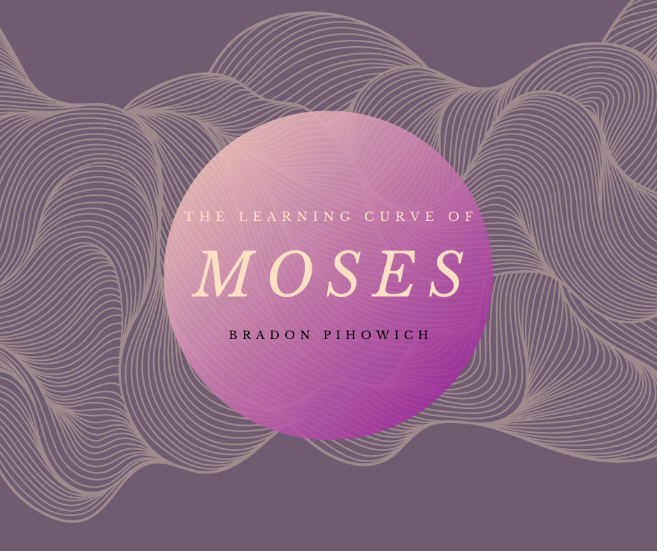 The Learning Curve of Moses